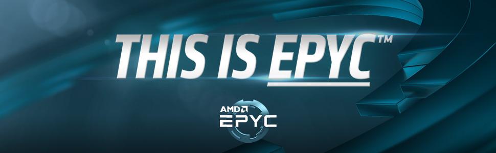 AMD Server News